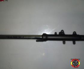 DSCN4650
